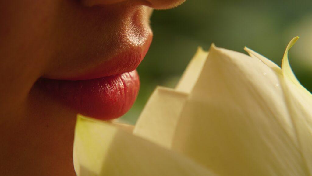 dudak renklendirme-1